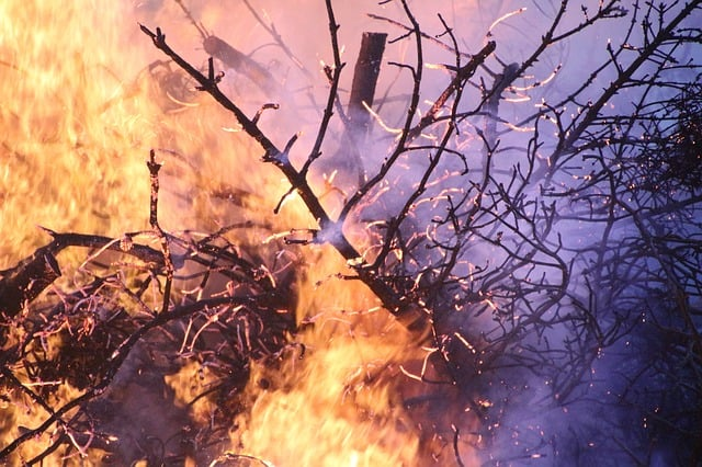 California's-wildfires